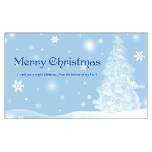 《クリスマスカード サンタクロース サンタ》気軽に使える名刺サイズのメッセージカード デザインメッセージカードミニ(100枚パック)[DMM-148-CB]