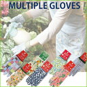 Multiple_gloves_main1