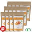 有機 ドライマンゴー50g 12袋 砂糖不使用 タイ産 JASオーガニック マンゴー マハチャノック種 無添加 無漂白 無保存剤 グルテンフリー