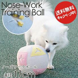 トレーニング ボール 老犬の運動不足・無気力でも安心!認知症対策!ドッグ 犬用 ペット ワンちゃん おもちゃ しつけ ドッグ わんちゃん大好きシリーズ NS
