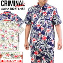 S ss criminal 1607