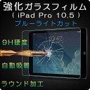 新iPad Pro 10.5インチ 目に優しい ブルーライトカット 2.5D曲面強化ガラス 保護フィルム キズ防止 ラウンドエッジ加工 衝撃吸収 液晶保護 ガラ...