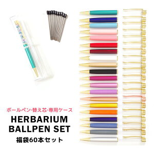 ハーバリウムボールペン 福袋 60本セット ハーバリウムペン ハーバリウム ペン 替え芯付き ケース付き 手作り セット キット 可愛い かわいい | ギフト プレゼント 送料無料