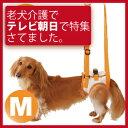 犬 歩行補助 介護用品(後ろ足 ハーネス M)老犬の介護用・胴輪