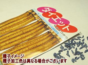 ごぼう秋蒔き種子ダイエット6mL小袋詰