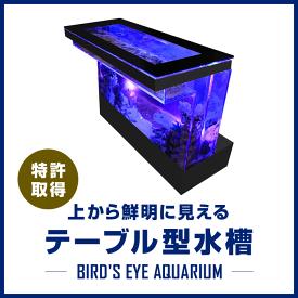 バーズアイ水槽 テーブル型水槽 水槽 テーブル 水槽セット 熱帯魚 インテリア オーバーフロー水槽 店舗什器 魚 アクアリウム 金魚 <バーカウンター ブラック BEA-COU-1506-B>