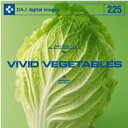 DAJ 225 VIVID VEGETABLES