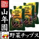 【化学調味料無添加】野菜チップス 75g×4袋セット 送料無料 沖縄県産石垣島の塩と7種類の野菜を使用 真空低温で仕上…
