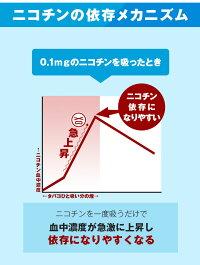 1日3%ずつカットして知らない間に禁煙!離煙パイプ31本セット|ニコチンカット日本製電子タバコ禁煙パイポ離縁パイプ吸いながら禁煙禁煙グッズ離脱症状らくらく無理なく禁煙イライラしない楽な禁煙離煙ニコチンパッチとは違う特許取得禁煙方法