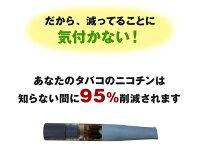 吸いたい気持ちをガマンせず禁煙!離煙パイプGRGS31本セット|いつものタバコでニコチン95%カット!日本製禁煙グッズ吸いながら簡単らくらく無理なく禁煙イライラしない楽な禁煙離煙ニコチンパッチとは違う特許取得禁煙パイプ