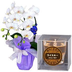 ミディ胡蝶蘭 お供え 花 ローソクセット 2本立 白色 カメヤマ 故人の好物シリーズ ウイスキーロックキャンドル ギフト