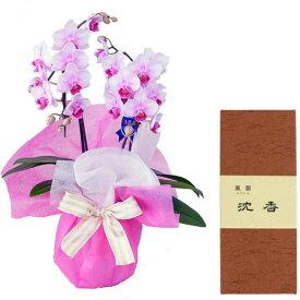 ミディ胡蝶蘭 2本立ち ピンク色 みのり苑 お香 風韻シリーズ 沈香 短寸15g セット ギフト