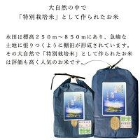 新米令和2年産特別栽培米ヒノヒカリ天空の郷高知県本山町選べる精米白米玄米5kg