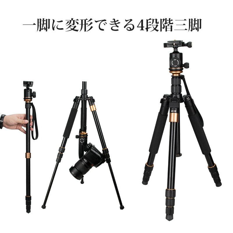 送料無料 三脚 自由雲台付き カメラ三脚 マグネシウム合金製 軽量 コンパクト 4段 三脚・一脚可変式&着脱ボール雲台搭載 折りたたみ可能 デジカメ ビデオカメラ 一眼レフ用カメラ Canon Nikon Petax Sony Olympus PENTAX用 旅行 運動会 登山 アウトドア 卒業式