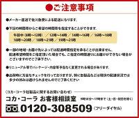 【工場直送】【送料無料】爽健美茶600mlPET24本入り2ケース48本P06May16