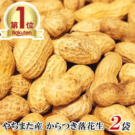 令和2年 新豆 千葉県やちまた産 からつき落花生 ただ今10g増量中 高級感あるクラフト袋入 中手豊品種 110g×2袋 ナッツ 全国送料無料