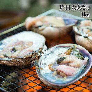 (片貝大あさり 1kg) 活ものの大あさり (ウチムラサキ貝) を使用し、鮮度の良いままに生 冷凍 冷凍