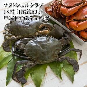 (ソフトシェルクラブ 約50g 18尾 ノコギリガザミ)殻ごと香ばしく食べられる脱皮したての蟹 目・ガニ・エプロンを丁寧に取り除いてあります(カニ)(冷凍)(お歳暮)