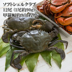 カニ 殻ごと香ばしく食べられる脱皮したての蟹 ソフトシェルクラブ 約90g 12尾 ノコギリガザミ 目・ガニ・エプロンを丁寧に取り除いてあります 冷凍