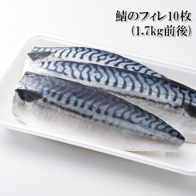 鯖 長崎県産 サバのフィレ 10枚 サバ 脂ののった鯖を3枚におろし、中骨を取り、バラ凍結にしました 冷凍【どれでも5商品購入で送料無料 (一部地域除く)】