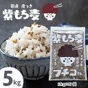 国産 もち麦 送料無料 「 皮付 紫もち麦 5kg(1kg5袋)」 ダイシモチ アントシアニン 腸内環境 食物繊維