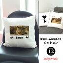 【父の日 ギフト】愛猫ネーム&写真入り クッション【楽ギフ_名入れ】【楽ギフ_包装】