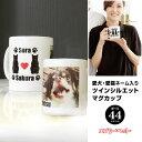 【父の日のプレゼント】【名入れ&写真入り 愛犬猫 マグカップ 多頭飼い】ツインシリーズ マグカップ デスク デスク 仕事