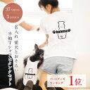 ● ペアルック 犬 服 と 半袖Tシャツ 名入れ ベーシック お揃い おそろい 小型犬 大型犬 カップル Tシャツ 春服 夏服 犬 飼い主 ギフト プレゼント