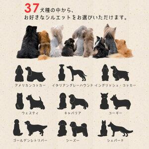 37犬種小型犬中型犬大型