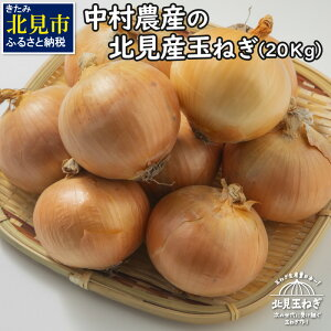 【ふるさと納税】【A-062-09】【2021年9月下旬から順次発送】北海道北見産 玉ねぎ 20kg