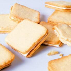 【ふるさと納税】北海道チーズクッキー48枚