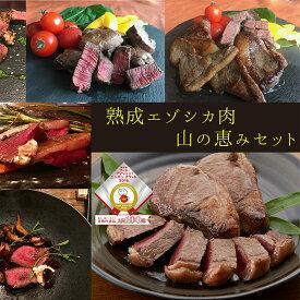 【ふるさと納税】北見エゾシカ 熟成肉 山の恵み セット