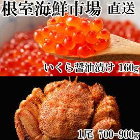 【ふるさと納税】 ボイル毛ガニ700〜900g×1尾、いくら醤油漬け80g×2P B-11027