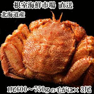 【ふるさと納税】ボイル毛がに600〜750g×3尾 D-11010