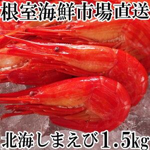 【ふるさと納税】【12月6日決済確定分まで年内配送】根室海鮮市場<直送>北海しまえび1.5kg(500g×3P) B-28036