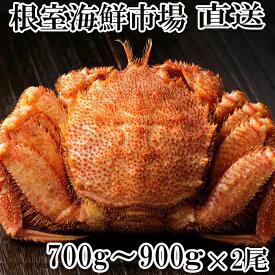 【ふるさと納税】 根室海鮮市場<直送>ボイル毛がに700〜900g×2尾 C-28005