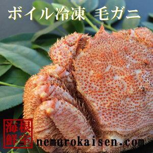 【ふるさと納税】[北海道根室産]毛ガニ1.0kg以上×1尾 D-57019