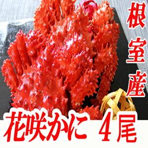 【ふるさと納税】[北海道根室産]花咲かに400g〜500g前後×4尾 B-70015
