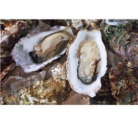 【ふるさと納税】オホーツクサロマ産カキ約2.5kg(25個前後)2年貝殻付き 缶入り 【魚貝類・生牡蠣・かき】 お届け:2020年11月〜2021年2月末まで ※年末年始はお届けできません。出荷不可期間:12月23日〜1月15日