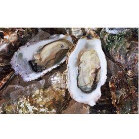 【ふるさと納税】オホーツクサロマ産カキ約2.8kg(28個前後)2年貝殻付き 【魚介類・カキ・牡蠣】 お届け:2020年11月〜2021年2月末まで ※年末年始はお届けできません。出荷不可期間:12月23日〜1月15日