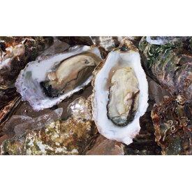 【ふるさと納税】オホーツクサロマ産カキ約2.0kg(20個前後)2年貝殻付き 【魚介類・カキ・牡蠣】 お届け:2020年11月〜2021年2月末まで ※年末年始はお届けできません。出荷不可期間:12月23日〜1月15日