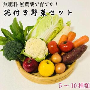【ふるさと納税】無肥料無農薬!泥つき野菜セット(5〜10種類)