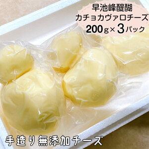 【ふるさと納税】早池峰醍醐 手造り無添加カチョカヴァロチーズ200g×3パック