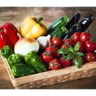 【ふるさと納税】花巻農家の夏野菜セット
