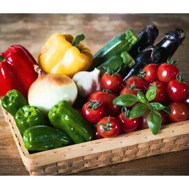 【ふるさと納税】花巻農家の夏野菜セット 野菜 詰め合わせ お楽しみ 農家直送 7~10品