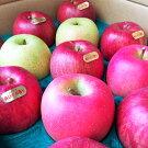【ふるさと納税】【予約受付】林檎・梨詰め合わせ!花巻産秀品5kg