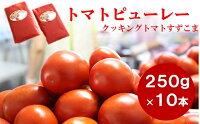 【ふるさと納税】トマトピューレ—(クッキングトマトすずこま)10パック