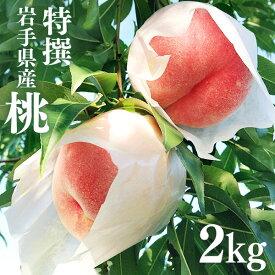 【ふるさと納税】ふじむら農園の特撰白桃2kg