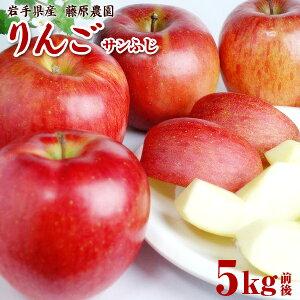 【ふるさと納税】藤原農園のりんご『サンふじ』5kg