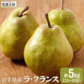 【ふるさと納税】JAいわて中央の美味しい梨 ラ・フランス5kg(13玉~20玉)